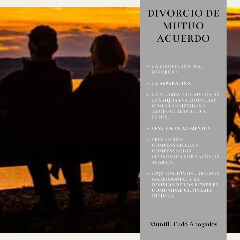 DIVORCIO DE MUTUO ACUERDO